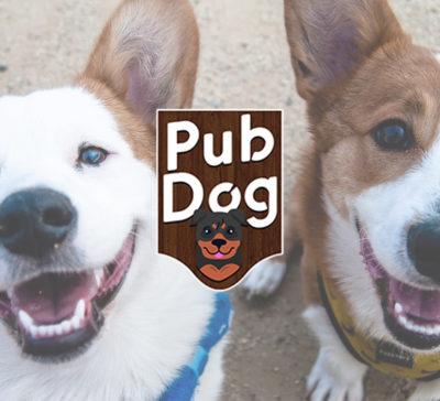 Pub Dog Training School